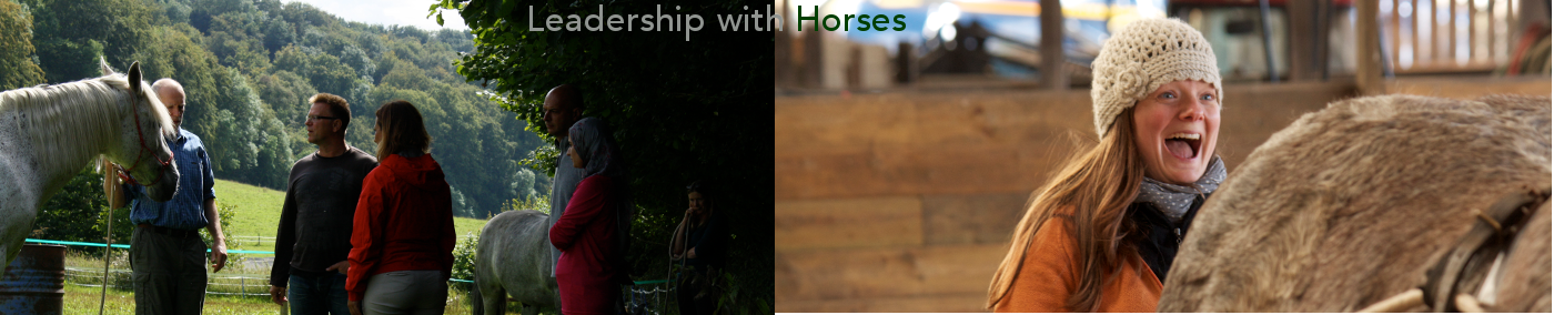 Leadership with Horses